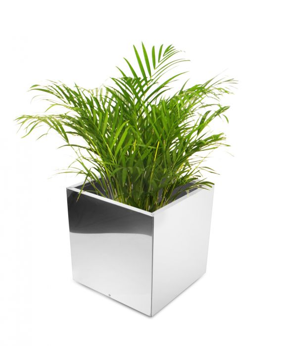 50cm Stainless Steel Mirrored Cube Planter