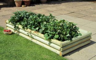1.8m Premium Timber Veggiebed