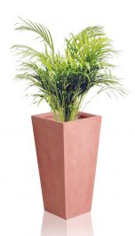 51cm Terracotta Fibrecotta Tall Flared Square Planters – Set of 2