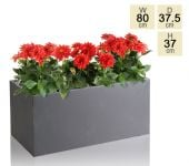 Dark Grey Fibrecotta Trough Planter -  L80cm x H37cm