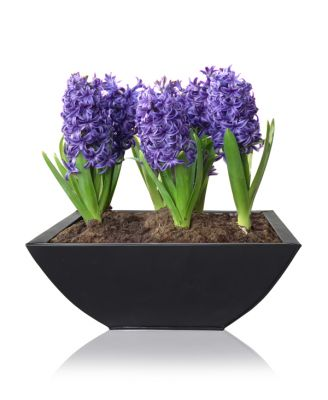 W35cm Black Low Curved Zinc Galvanised Planter - By Primrose®