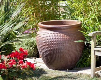 Dark Clay Pot - Large  (65cm tall by 70cm wide)