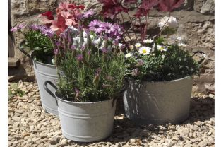 Aged Zinc Bucket Planter - Mixed Set of 3