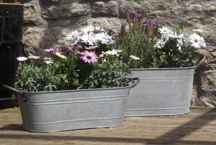 Aged Zinc Trough Planter - Mixed Set of 2