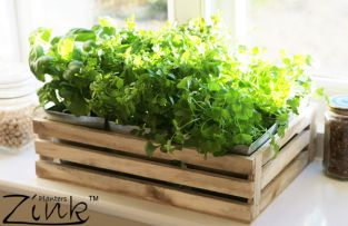 Kitchen Herb Windowsill Planter Box with 6 Steel Pockets