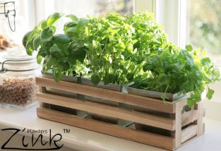 Kitchen Herb Trough Windowsill Planter with 3 Steel Inserts