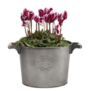 Pewter Bucket Planter H20cm x W26cm