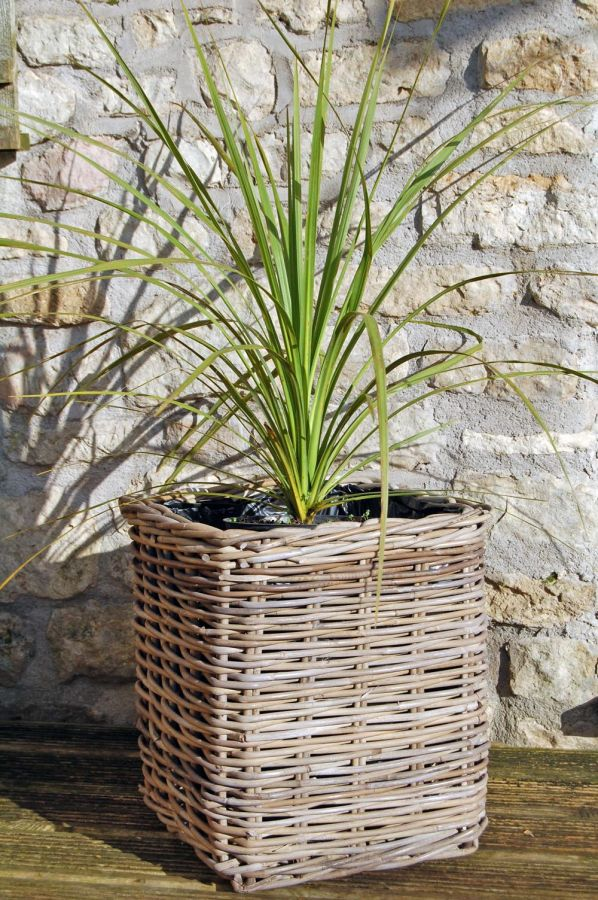 40cm Willow Small Square Basket Planter