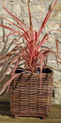 40cm Willow Small Square Basket Planter with Wooden Feet