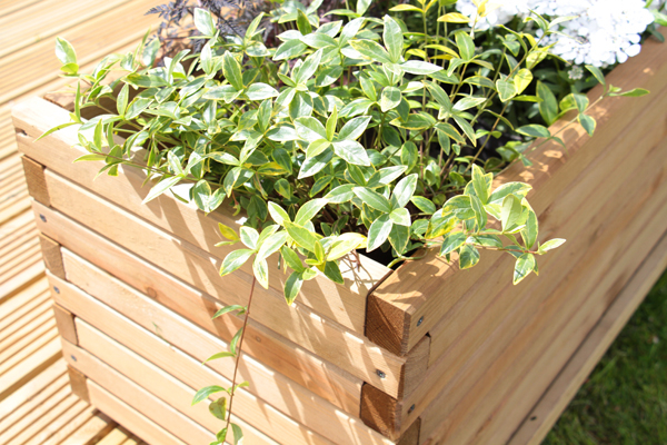 L1.2m Pine Raised Trough Planter