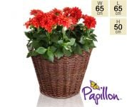 Wicker Round Basket Planter D65cm by Papillon�