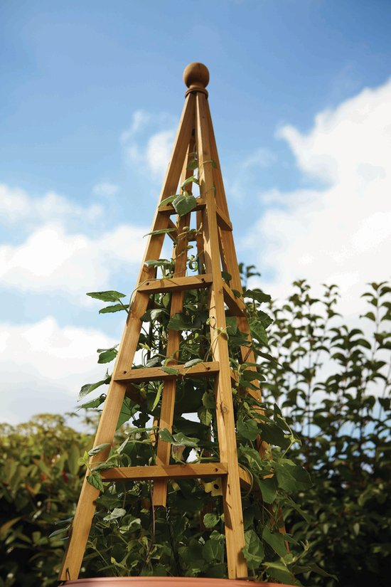 1.9m Wooden Obelisk in Tan - by Smart Garden
