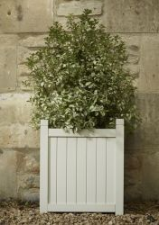 Hardwood Square Versailles Planter in Ivory W44cm x H49cm