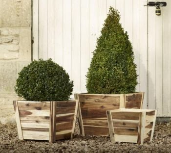 Tapered Cube Acacia Hardwood Planters - Mixed Set of 3 - 29cm/36cm/44cm