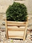 W29cm Acacia Hardwood Tapered Cube Planter