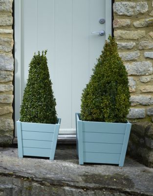 W36cm Acacia Hardwood Tapered Square Planter in Blue