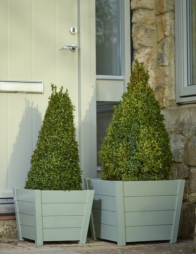 Tapered Square Acacia Hardwood Planters in Green - Set of 2 - W36cm/W44cm