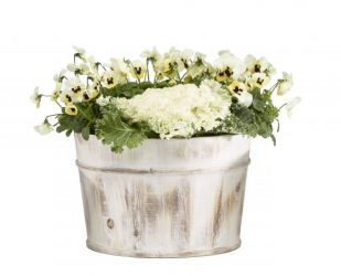 Rustic White-Washed Wooden Tub Planter - D23cm x H16cm