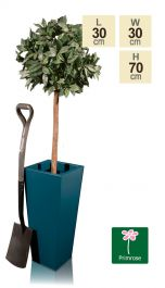 H70cm Zinc Galvanised Teal Flared Square Planter - By Primrose™