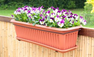 Verbena Plastic Window Box Planter, Saucer and Bracket W60cm x H20cm x D15.5cm