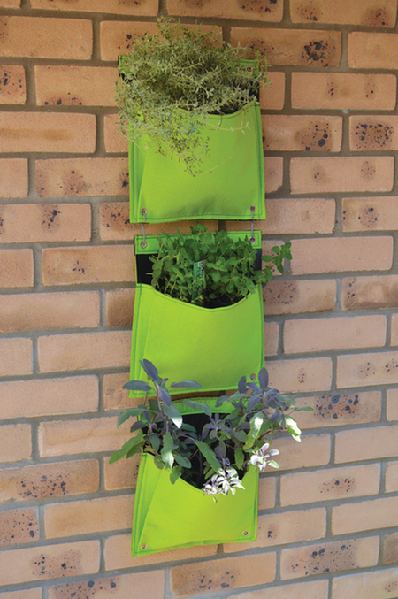 Living Wall Herb Planters 3 Piece Set - Lime Green