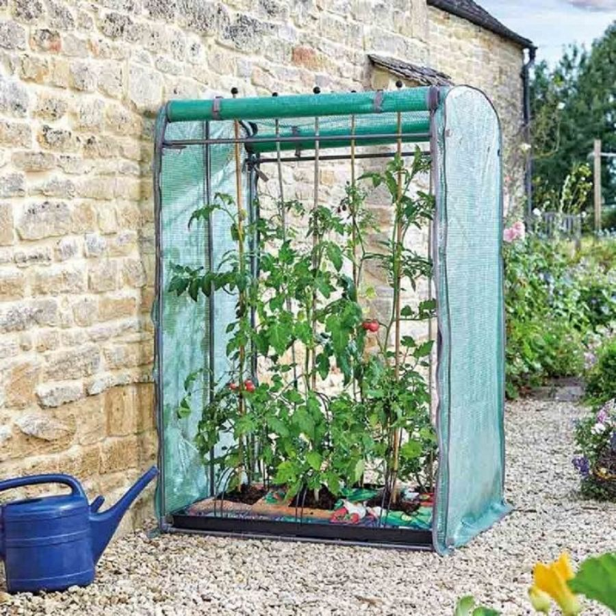 Smart Garden - Tomato Gro-Zone Max Growing Station