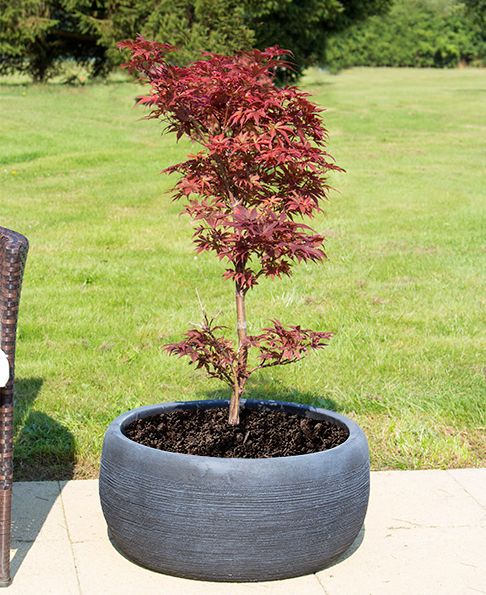 Dia44cm Floyd Black Slate Effect Round Planter - By Terra Pot™