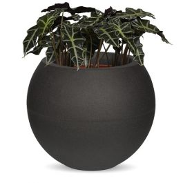 51cm Capi Tutch Vase Ball in Black