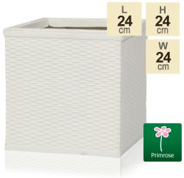 H24cm Cream Rattan Finish Fibrecotta Cube Planter - by Primrose®