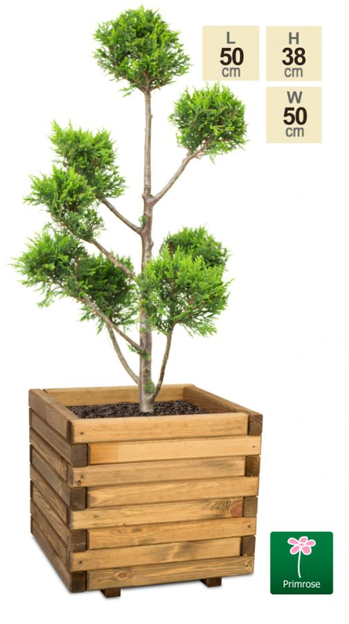 50cm Medium Wooden Pine Raised Cube Planter