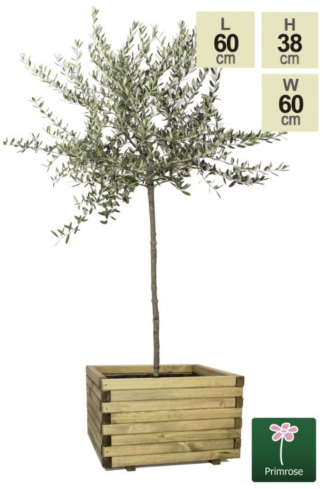 60cm Large Wooden Pine Raised Cube Planter