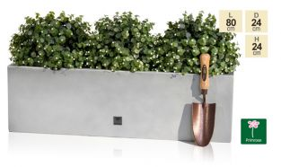 80 x 24cm Gloss Fibreglass Trough Planter in Silver - By Primrose™
