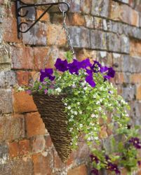30cm Rafiki Hanging Cone Planter by Smart Garden