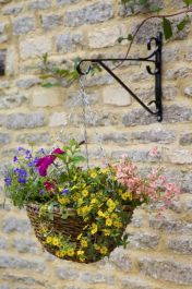 30cm Rafiki Hanging Basket Planter - by Smart Garden