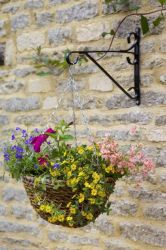 36cm Rafiki Hanging Basket Planter - by Smart Garden