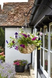 30cm Gilgil Hanging Basket Planter - by Smart Garden