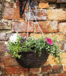 36cm Rattan Smart Garden Hanging Basket Planter