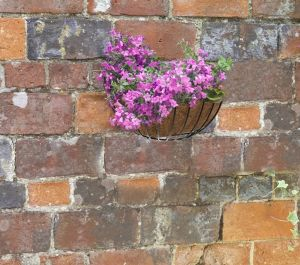 Smart Garden Wall Basket Planter - 40cm (16