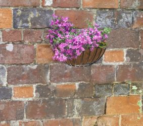 "Smart Garden Wall Basket Planter - 40cm (16"")"