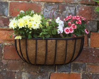 Smart Garden Forge Wall Manger Planter - 50cm (20