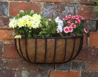 "Smart Garden Forge Wall Manger Planter - 50cm (20"")"