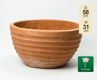D58cm Terracotta Bowl Planter
