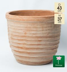 D43cm Terracotta Egg Planter
