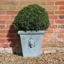 H40cm Lion Head Small Galvanised Zinc Planter