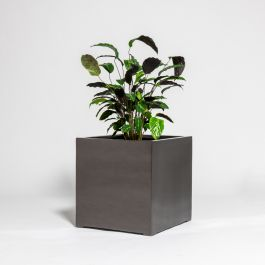 50cm Metallic Grey Polystone Cube Planter