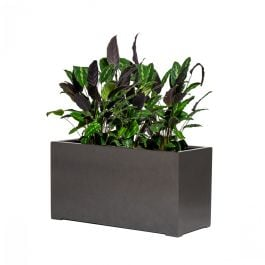 100cm Grey Gloss Polystone Trough Planter
