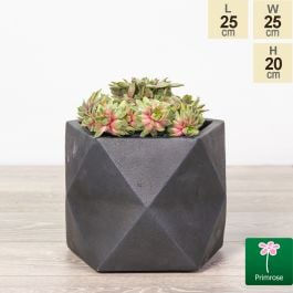 25cm Black Fibrecotta Geometric Pot by Primrose™