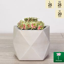 25cm Light Stone Fibrecotta Geometric Pot by Primrose™