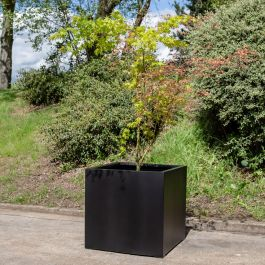 H75cm Jumbo Stone Composite Cube Planter in Black
