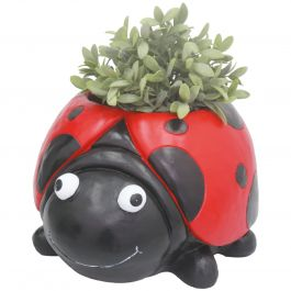 H37cm Ladybird Frost Proof Polyresin Planter  in Red